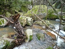 Blavet before the gorge