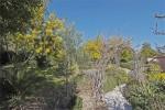 Latour backyard