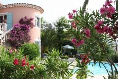 Latour house and pool 1