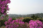 Latour view